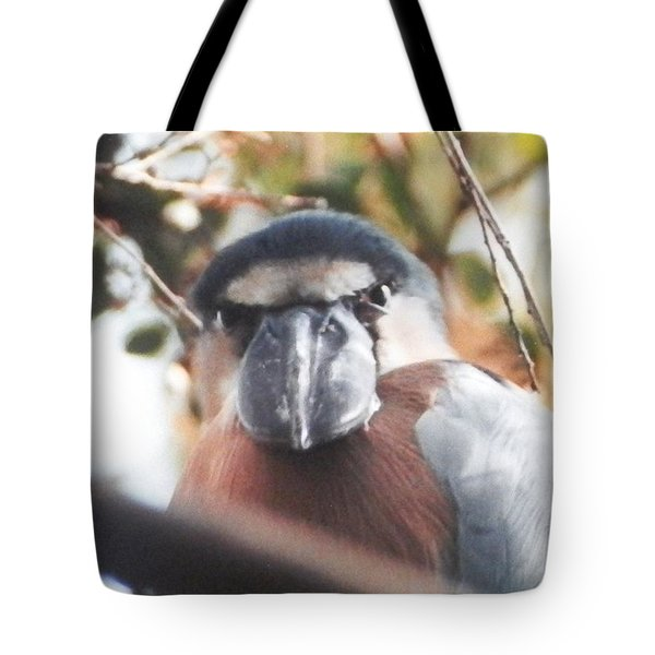 Tote Bag featuring the photograph Funny Bird Face by Belinda Lee