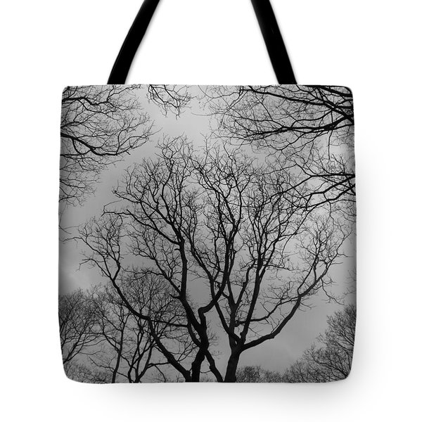 What Can You See Tote Bag