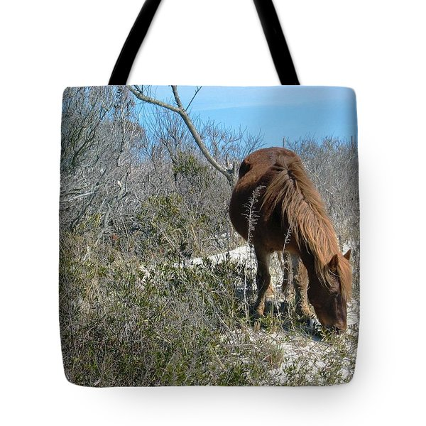 Tote Bag featuring the photograph What Do I See Here? by Photographic Arts And Design Studio