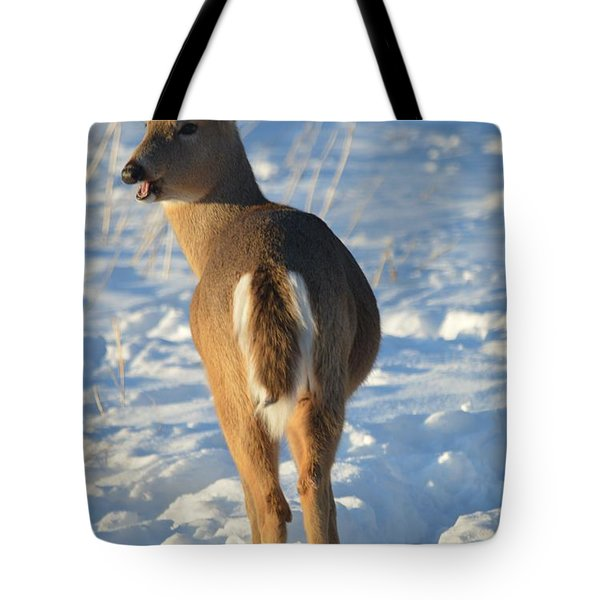 What Do You Think This Deer Is Saying? Tote Bag by Dacia Doroff