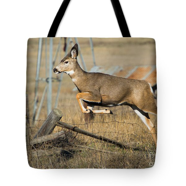 What Fence Tote Bag
