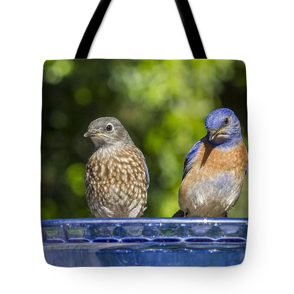 What Is It Tote Bag by Jean Noren
