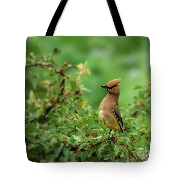 What? Tote Bag by Kenny Glotfelty
