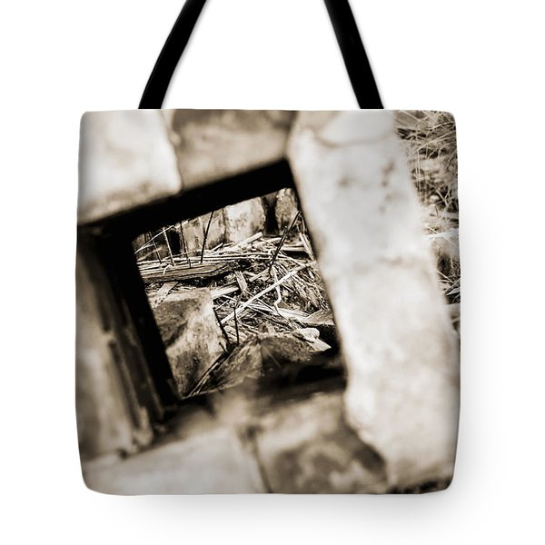 Tote Bag featuring the photograph What Remains by Amber Kresge