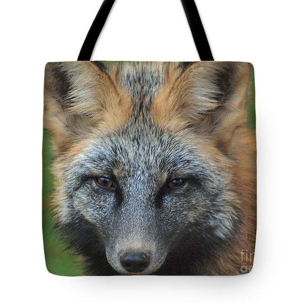 What The Fox Said Tote Bag