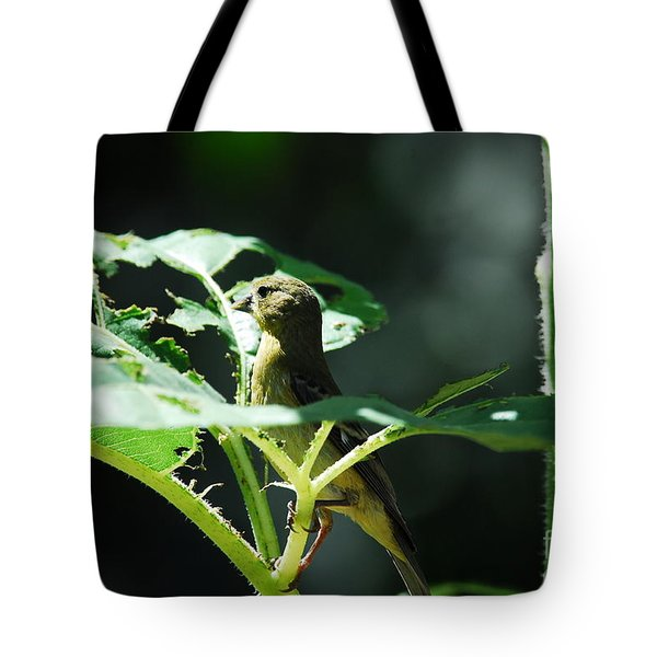 What Was That? Tote Bag by Laurianna Taylor