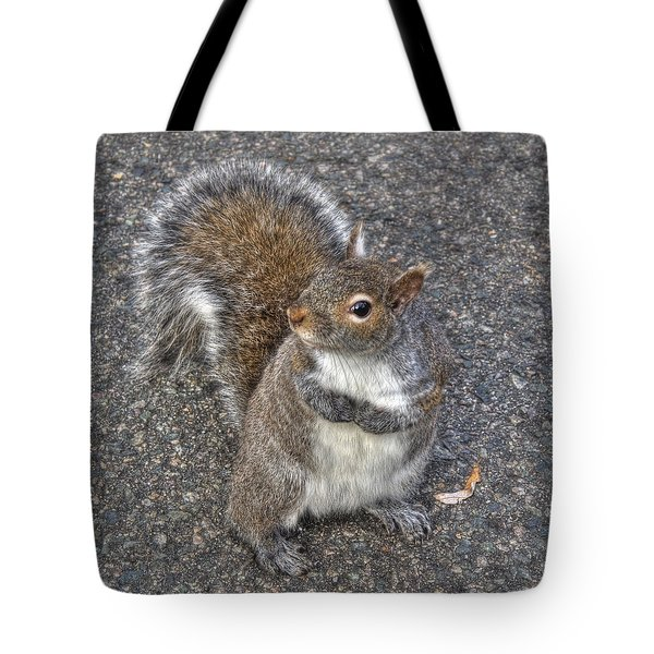 What You Looking At? Tote Bag by Joann Vitali
