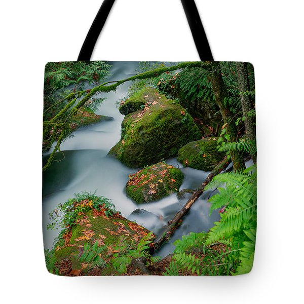Tote Bag featuring the photograph Whatcom Falls 1 by Jacqui Boonstra