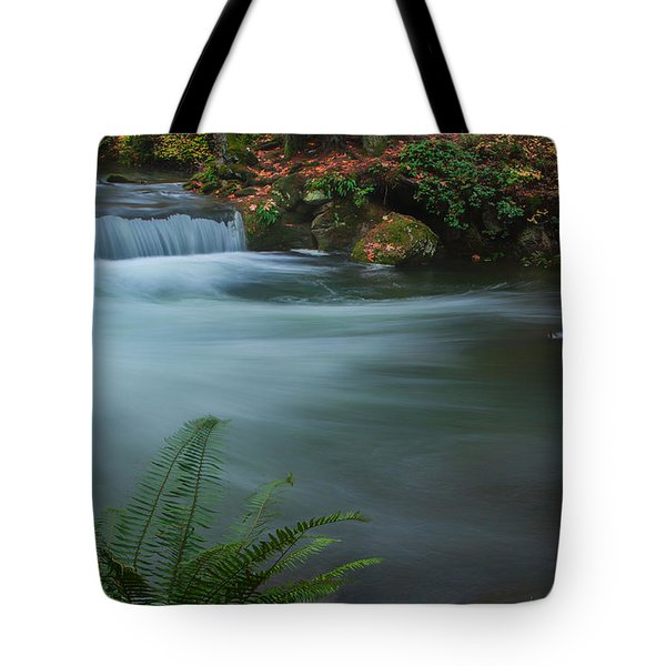 Tote Bag featuring the photograph Whatcom Falls Park by Jacqui Boonstra