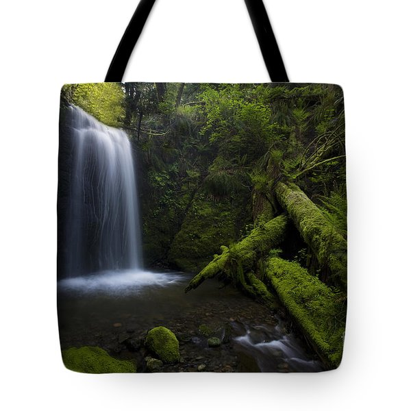 Whatcom Falls Serenity Tote Bag by Mike Reid