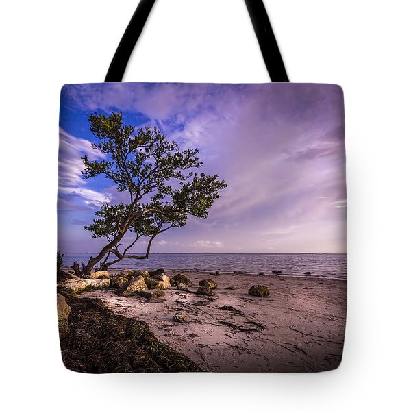 What's Beyond Tote Bag
