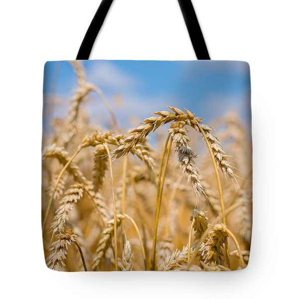Wheat Tote Bag by Cheryl Baxter