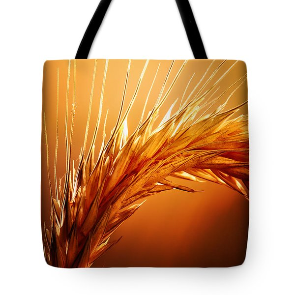 Wheat Close-up Tote Bag
