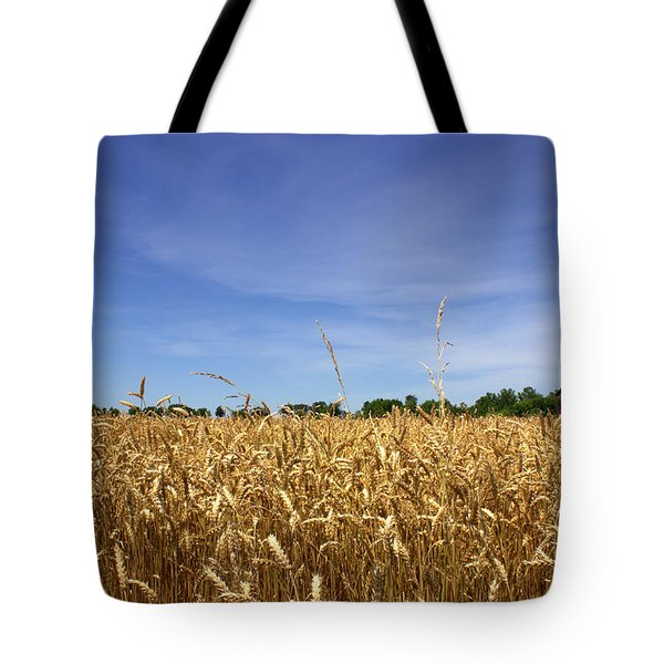 Wheat Field II Tote Bag by Beth Vincent
