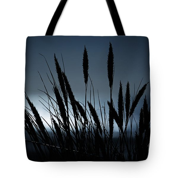 Wheat Stalks On A Dune At Moonlight Tote Bag