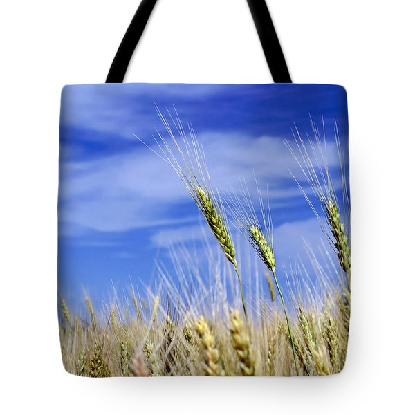 Tote Bag featuring the photograph Wheat Trio by Keith Armstrong