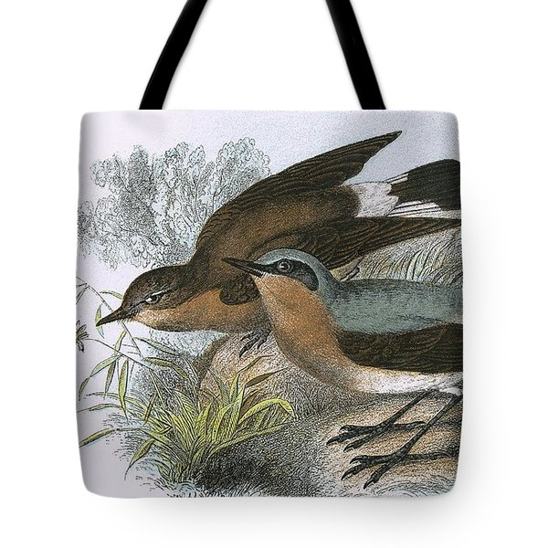 Wheatear Tote Bag by English School