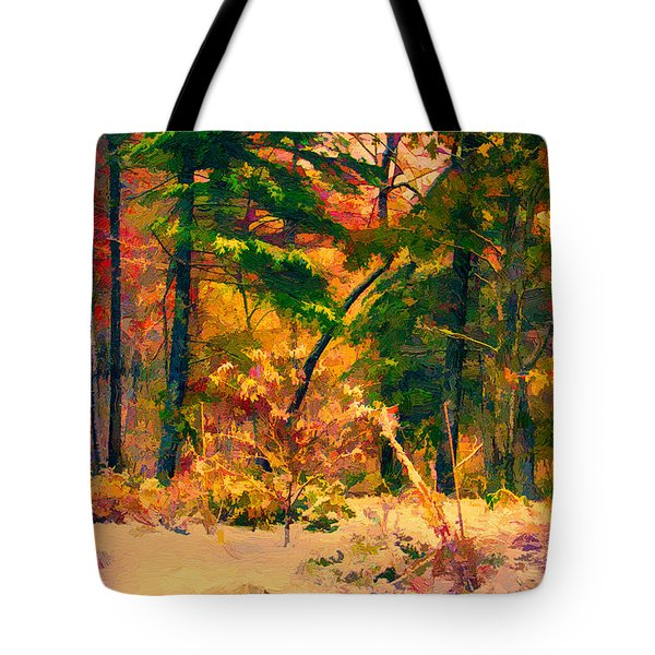 When Fall Becomes Winter Tote Bag