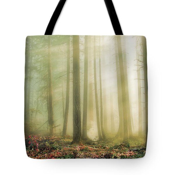 When God Smiles Tote Bag