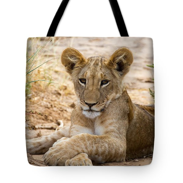 When I Am King Tote Bag