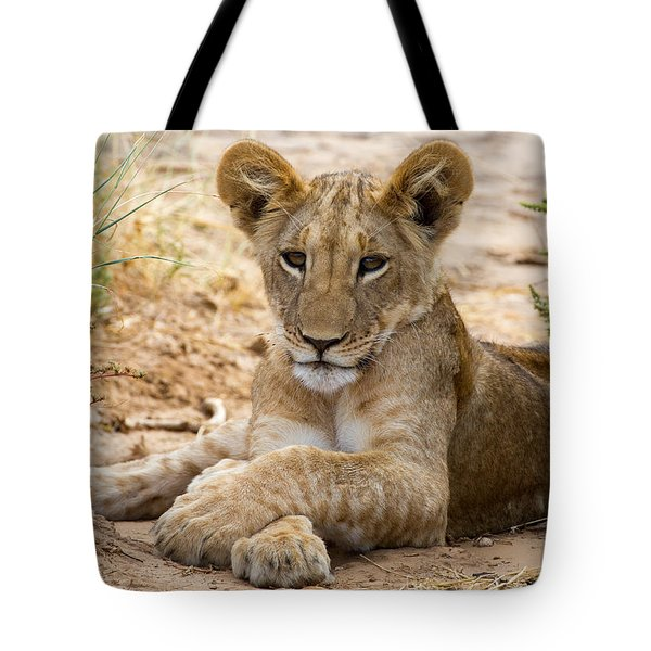 When I Am King Tote Bag by Chris Scroggins