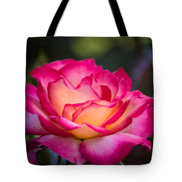Tote Bag featuring the photograph When It's Love by Patricia Babbitt