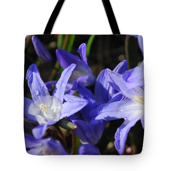 When The Sun Comes Out II Tote Bag by Micheline Heroux