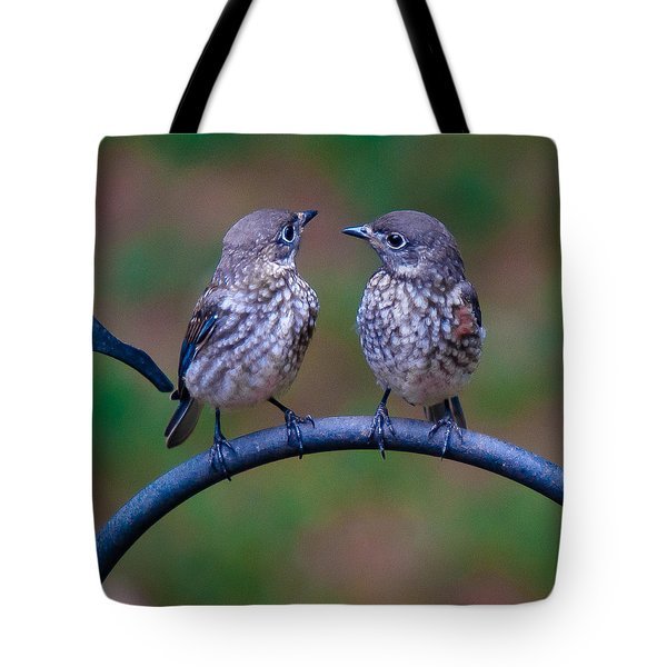 When's Dad Coming Back? Tote Bag by Robert L Jackson