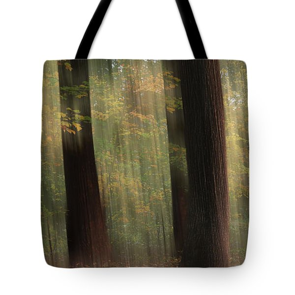 Where Faeries Play Tote Bag