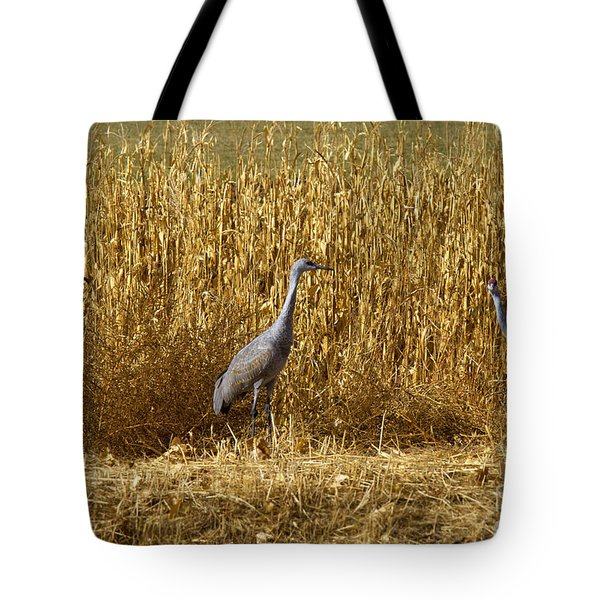 Where Is The Corn Tote Bag by Mike  Dawson