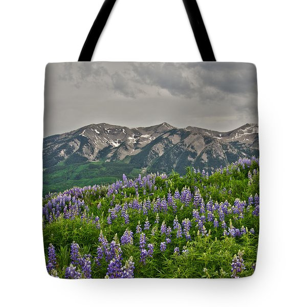 Whetstone Sunset Tote Bag