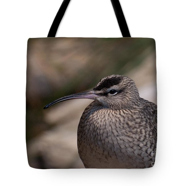 Tote Bag featuring the photograph Whimbrel by Bianca Nadeau