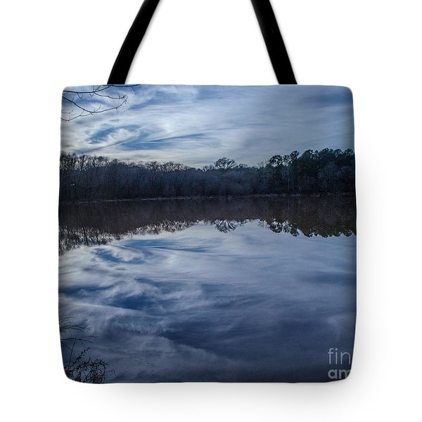 Whipped Cream Reflection Tote Bag by Donna Brown