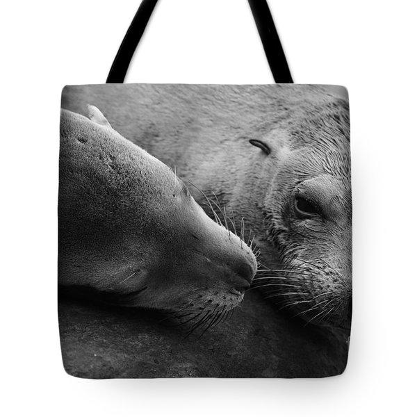 Whisker Love Tote Bag