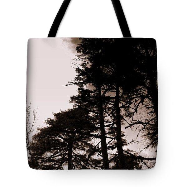 Whispering Trees Tote Bag by Salman Ravish