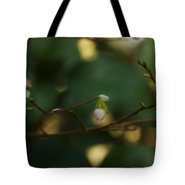 Tote Bag featuring the photograph Whispers Of Spring In The Tranquil Forest by Lisa Knechtel