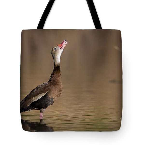Whistling Duck Whistling Tote Bag