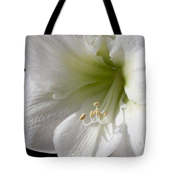 White Amaryllis Tote Bag by Adam Romanowicz