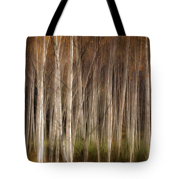 White Birch Abstract Tote Bag by John Vose