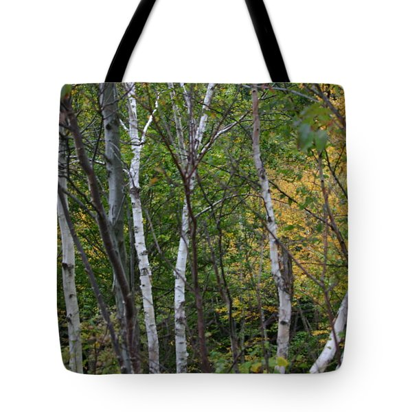 Tote Bag featuring the photograph White Birches In The Woods by Denyse Duhaime