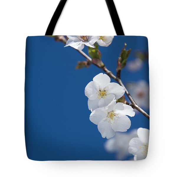 White Blossom Tote Bag by Anne Gilbert
