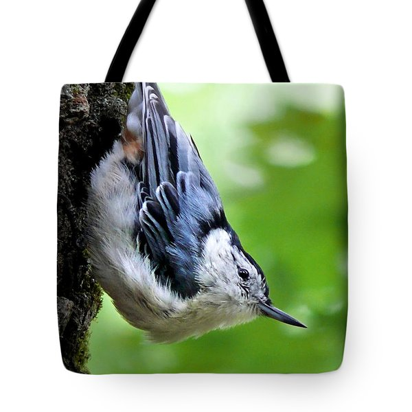 White Breasted Nuthatch Tote Bag by Christina Rollo