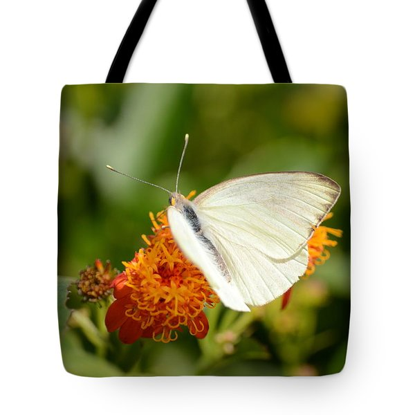 White Butterfly On Mexican Flame Tote Bag by Debra Martz