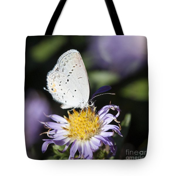 Tote Bag featuring the photograph White Butterfly by Chris Scroggins