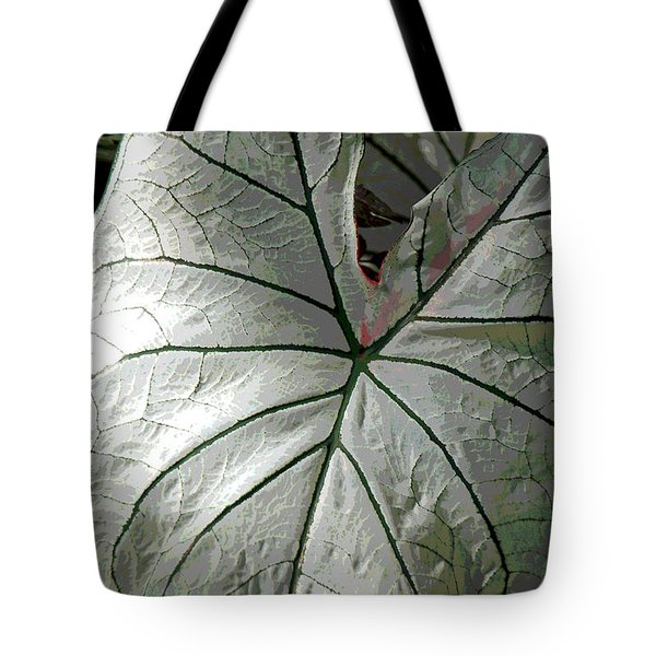 White Caladium Tote Bag by Suzanne Gaff