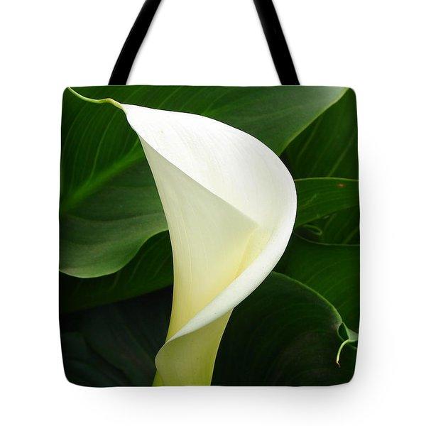 Tote Bag featuring the photograph White Calla by Lew Davis