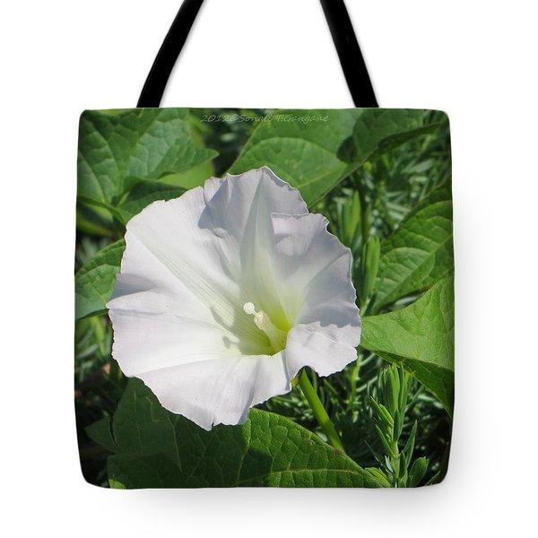 White Candour Tote Bag by Sonali Gangane