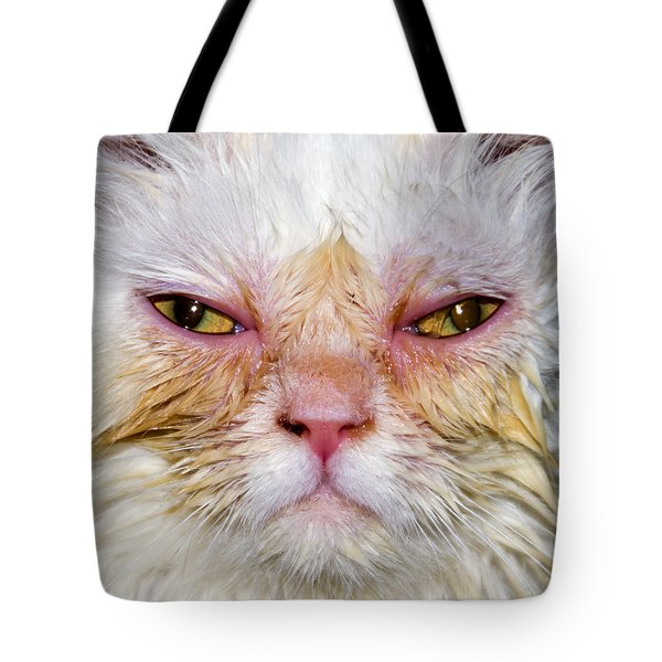 Scary White Cat Tote Bag