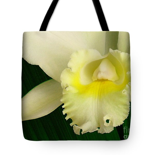 White Cattleya Orchid Tote Bag by James Temple