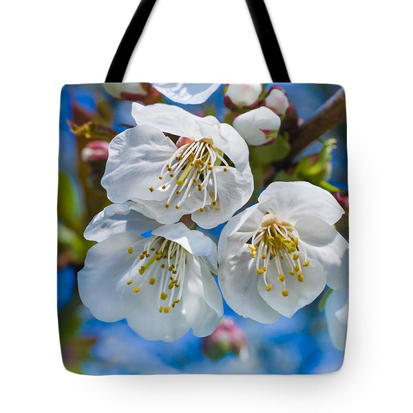 White Cherry Blossoms Blooming In The Springtime Tote Bag